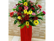 New Venture - Congratulatory  Fresh Floral Stand