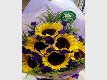Super Huge Half A Dozen Sunflower Bouquet with  one Congrats Tag
