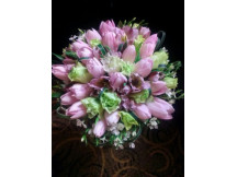 Huge 16 Lovely Pink Tulips Bouquet